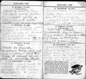 Lett's Schoolgirl diary 1959